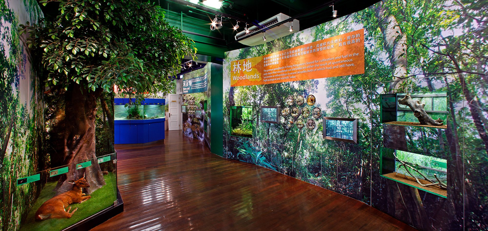林边生物多样性自然教育中心